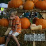 fall_festival_4